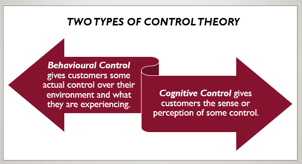 Cultural Risk Management through Control Theory