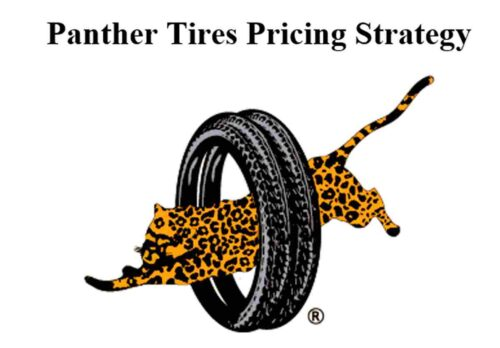 Panther tires pricing strategy - Interview based survey